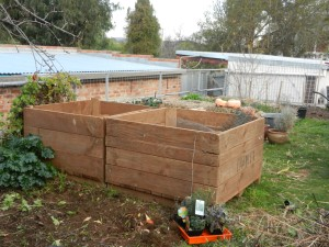 Potato crates for wicking beds. This area gets a bit of shade from the north in winter so the height of the beds should raise the vegies into the sun.